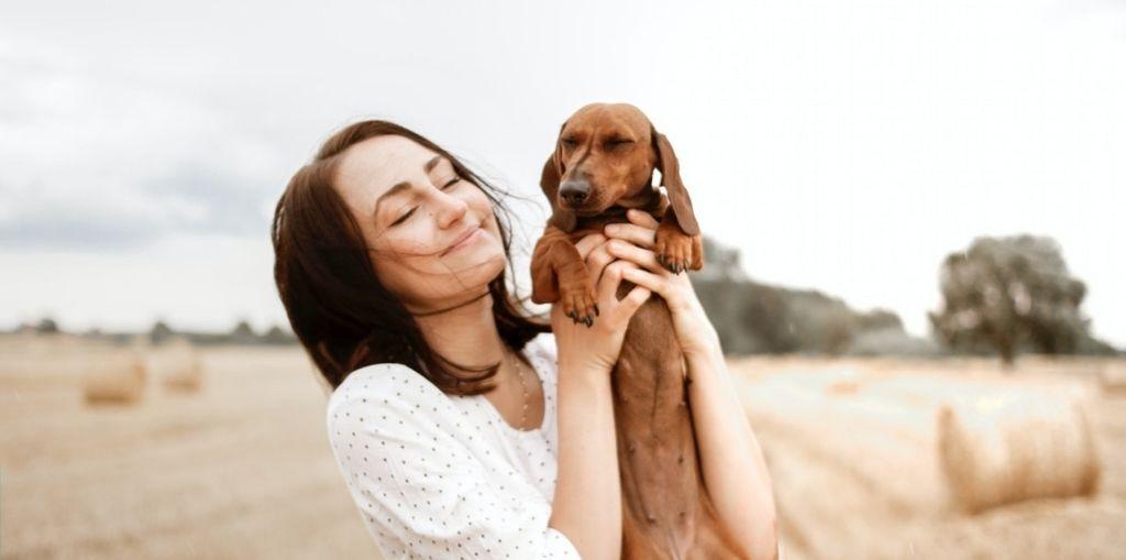 Obraz przedstawiający, jak wygląda ubezpieczenie psa.
